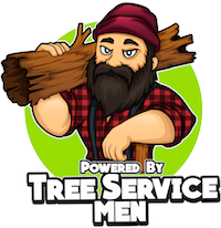 Holmby Hills | Tree Removal - Tree Trimming | Holmby Hills | Beverly Hills
